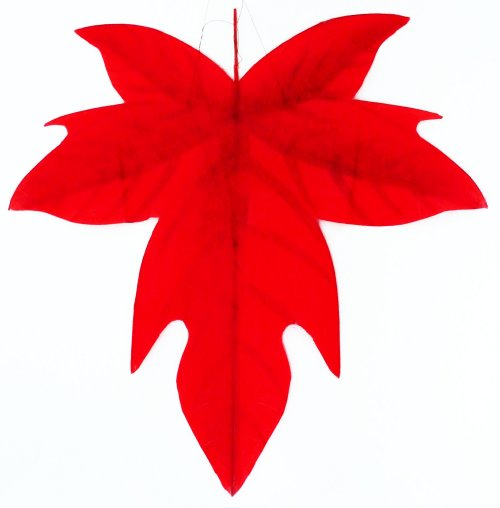 Ahornblatt /Maple Leaf